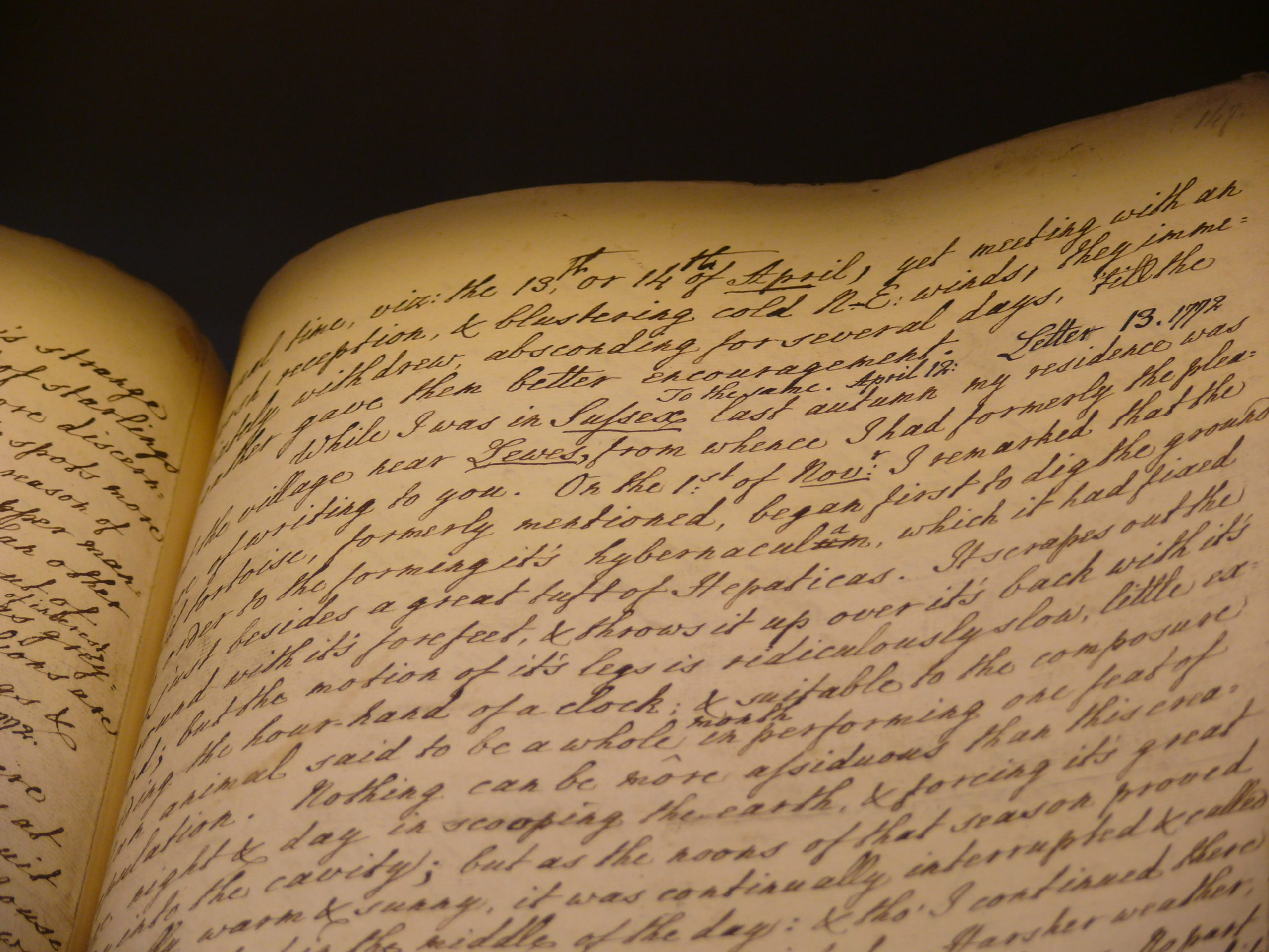 gilbert white manuscript
